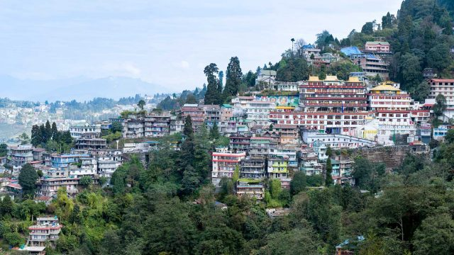 Protests in India: Is it the End for Darjeeling Tea?