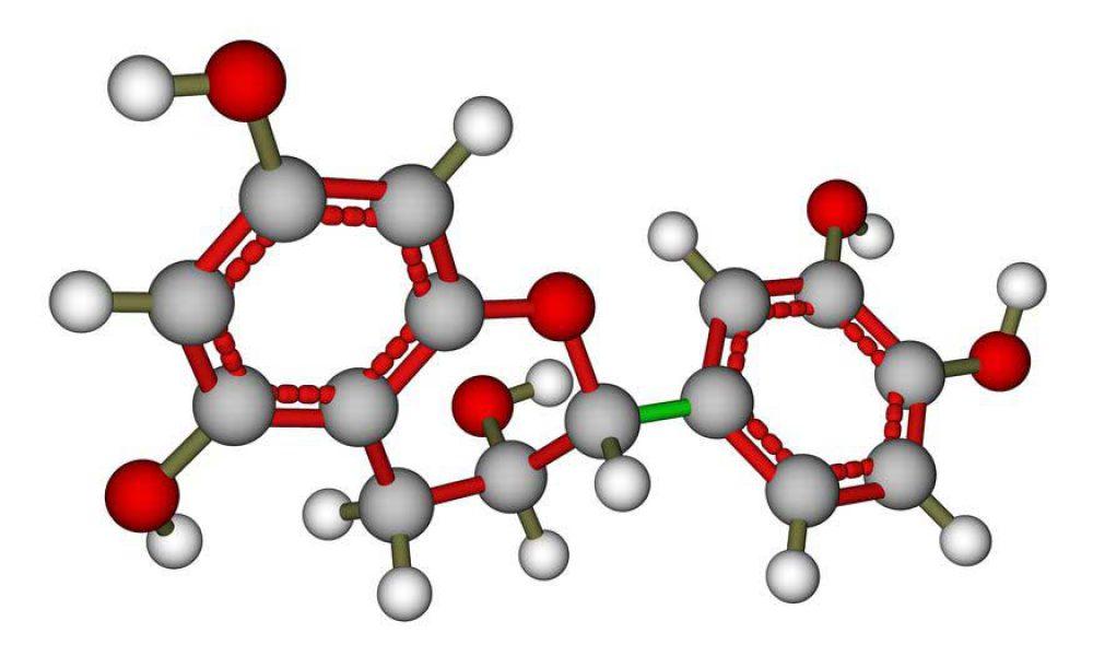 Tea DNA