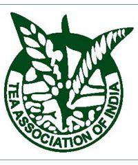 Tea Association of India
