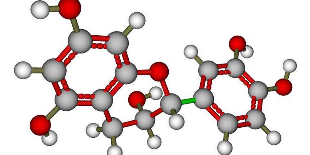 Understanding Tea DNA – A Major Breakthrough for the Tea Industry